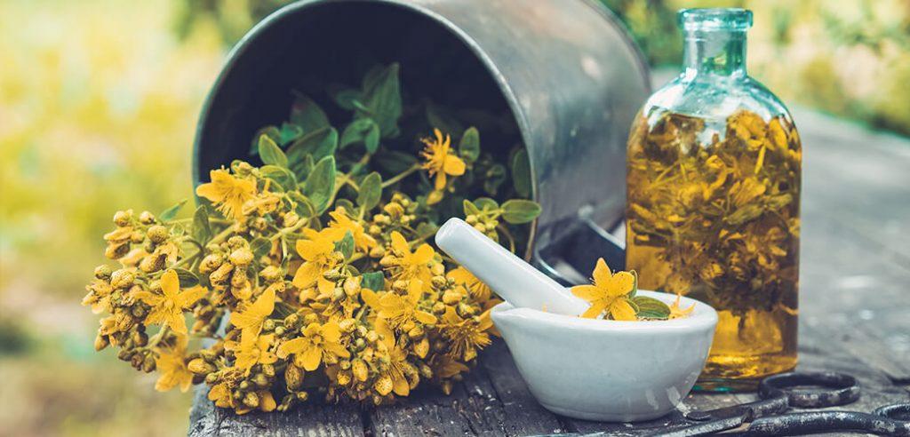Šentjanževka - čudovito zelišče za pomirjanje. Naravna pomoč pri depresiji, tesnobi in anksioznosti. OrCa naravna kozmetika.