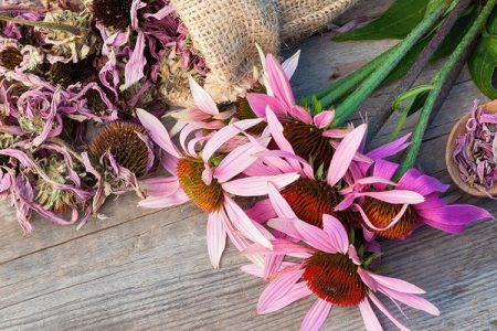10 naravnih rešitev pri gripi, prehladu in drugih virusnih obolenjih