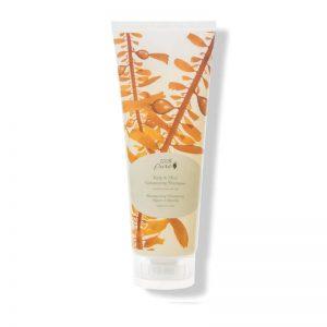 Šampon za volumen las, kelp in meta (236 ml). 100% Pure, naravna kozmetika.